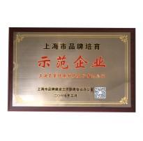 2017上海市品牌培育示范企业
